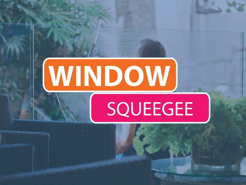 Window-cleaning-squeegee