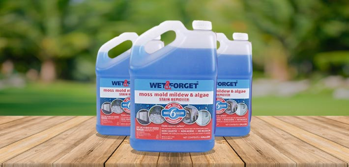 Wet-and-Forget-Mold-and-Mildew-Stain-Remover